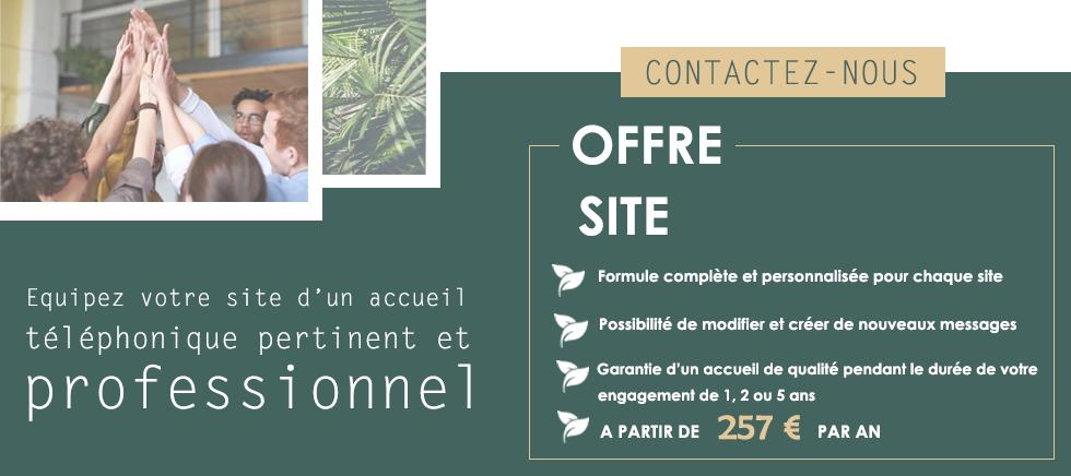 Offre Site